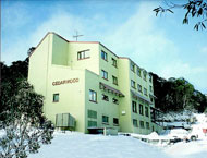 Cedarwood Apartments - Grafton Accommodation