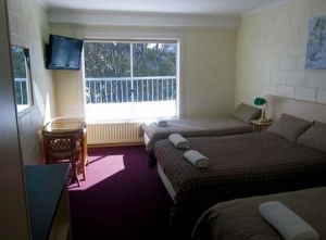 Falls Creek Hotel - Grafton Accommodation