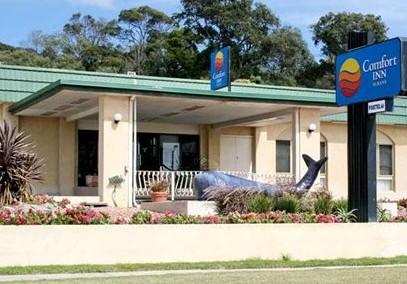 Comfort Inn Albany - Grafton Accommodation