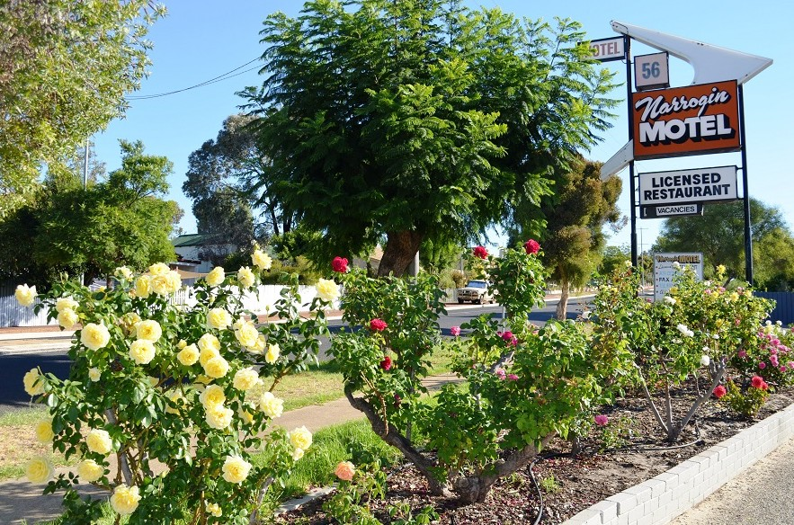 Narrogin Motel - Grafton Accommodation