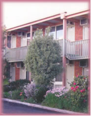 Coal Valley Motor Inn - Grafton Accommodation