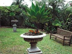 Bangalow Retreat - Grafton Accommodation