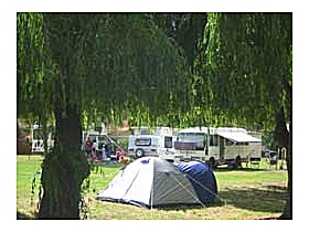 New Norfolk Caravan Park - Grafton Accommodation