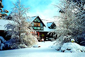 Cradle Chalet Boutique Luxury Lodge - Grafton Accommodation