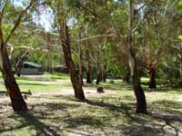 Woods Reserve - Grafton Accommodation