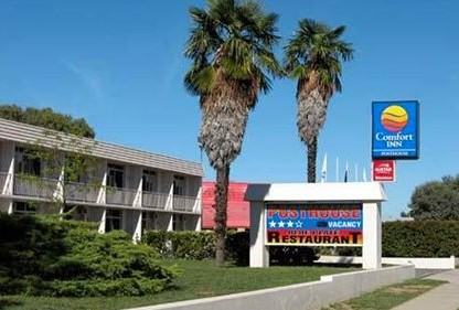 Comfort Inn Posthouse - Grafton Accommodation