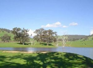 Hillview Farmstay - Grafton Accommodation