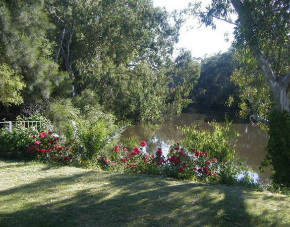 Bidgee Bankside Cottage - Grafton Accommodation