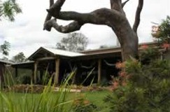 The Hollow Log Country Retreat - Grafton Accommodation