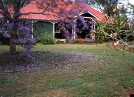 Minmore Farmstay Bed and Breakfast - Grafton Accommodation