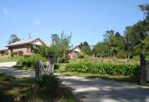 Hardy House Bed and Breakfast - Grafton Accommodation