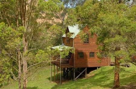 Hookes Creek Forest Retreat - Grafton Accommodation