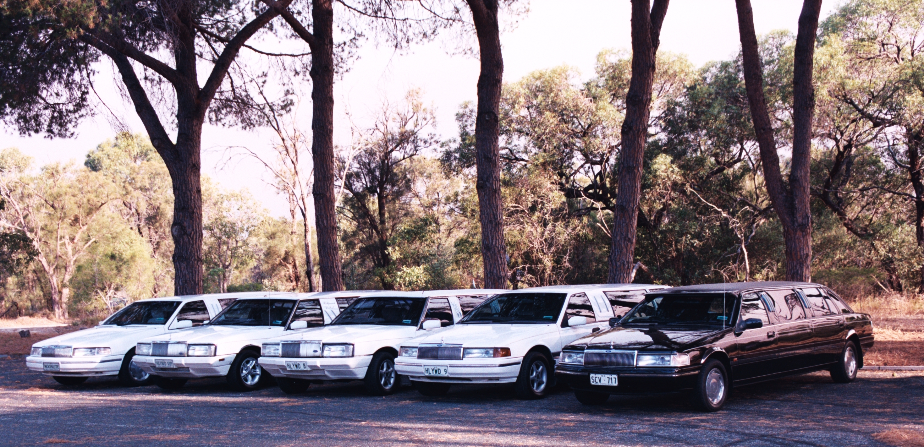 Hollywood VIP Limousines - Grafton Accommodation