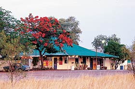 Wauchope Hotel and Roadhouse - Grafton Accommodation