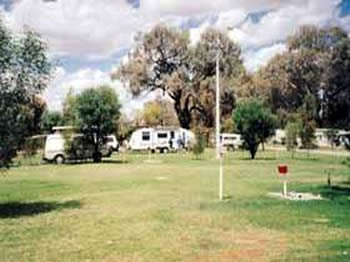 Morgan Riverside Caravan Park - Grafton Accommodation