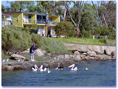 Almonta Holiday Apartments - Grafton Accommodation