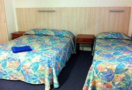 Mango Tree Motel - Grafton Accommodation
