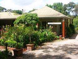 Treetops Bed And Breakfast - Grafton Accommodation