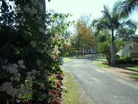 Riverview Caravan Park Gayndah - Grafton Accommodation