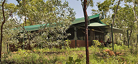 Arnhemland Barramundi Nature Lodge - Grafton Accommodation
