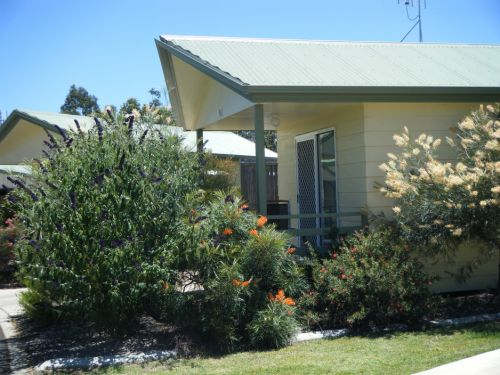 Pepper Tree Cabins - Grafton Accommodation