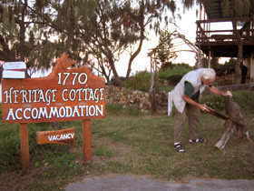 1770 Heritage Cottage - Grafton Accommodation