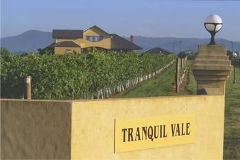 Tranquil Vale Vineyard amp Cottages - Grafton Accommodation