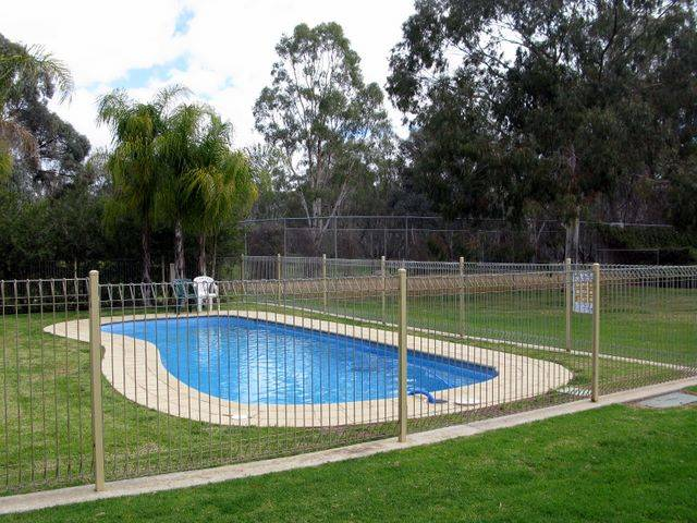 Pioneer Tourist Park - Grafton Accommodation