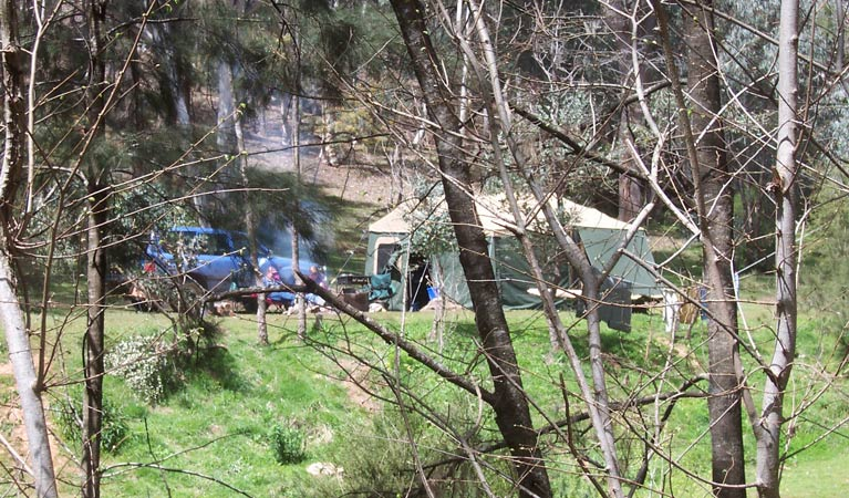 Abercrombie Caves campground - Grafton Accommodation