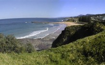 Coledale Beach Camping Reserve - Grafton Accommodation