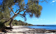 Currarong Beachside Holiday Park - Grafton Accommodation