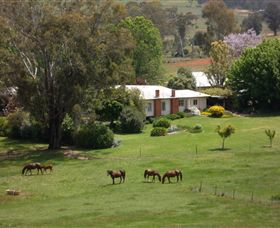 Acacia Park Farm House - Grafton Accommodation