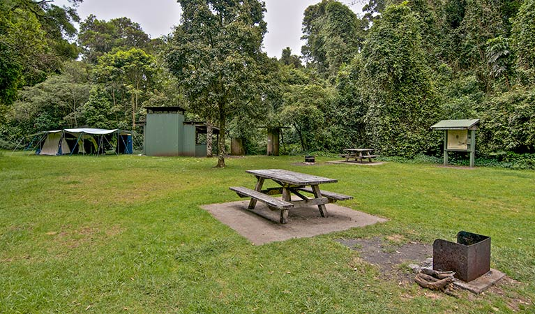 Forest Tops campground - Grafton Accommodation