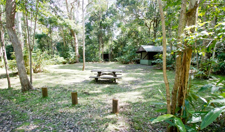 Iron Pot Creek campground - Grafton Accommodation