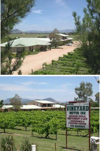 Mudgee Vineyard Motor Inn - Grafton Accommodation