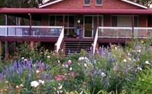 Rose Patch Bed and Breakfast - Grafton Accommodation