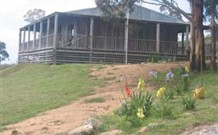 Dairy Flat Farm Holiday - Grafton Accommodation