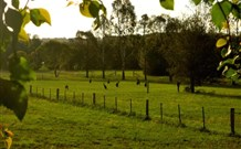 Stone Cottage Mittagong - Grafton Accommodation
