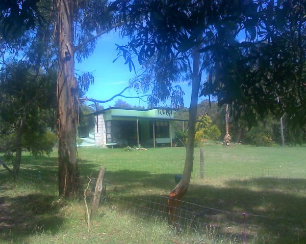 Bush Haven Cottages - Grafton Accommodation