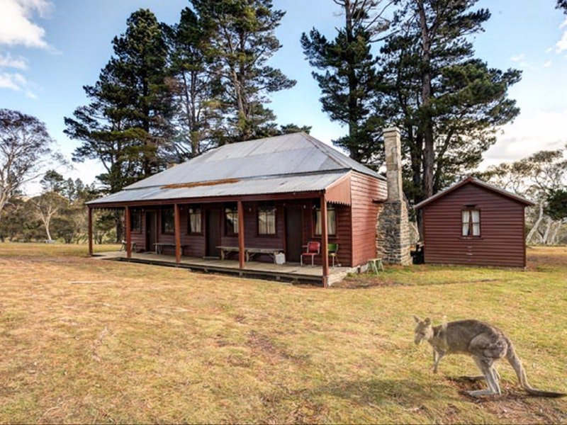 The Pines Cottage - Grafton Accommodation