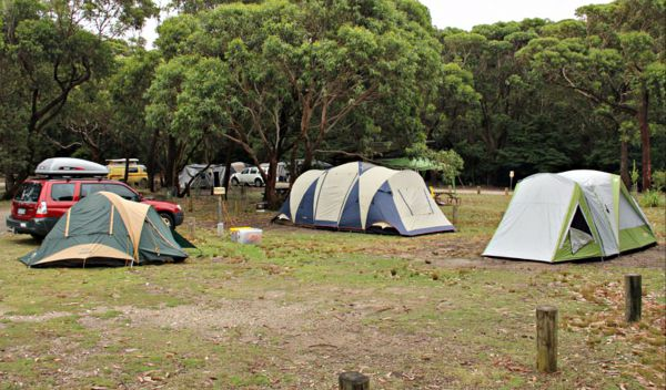 Pretty Beach Campground Murramarang National Park - Grafton Accommodation