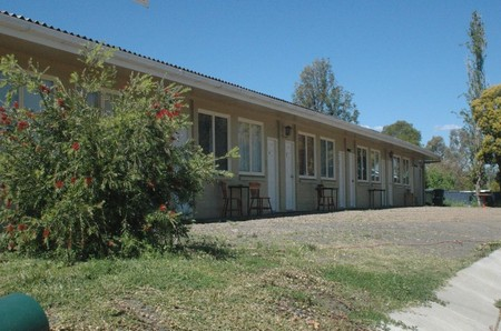 Cottonfields Motel - Grafton Accommodation