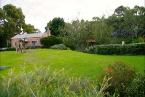 Pear Tree Hollow - Grafton Accommodation