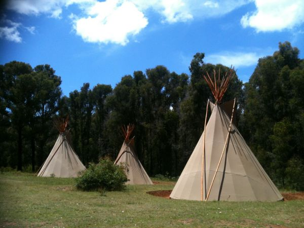 Kinglake Forest Adventures Camp - Grafton Accommodation