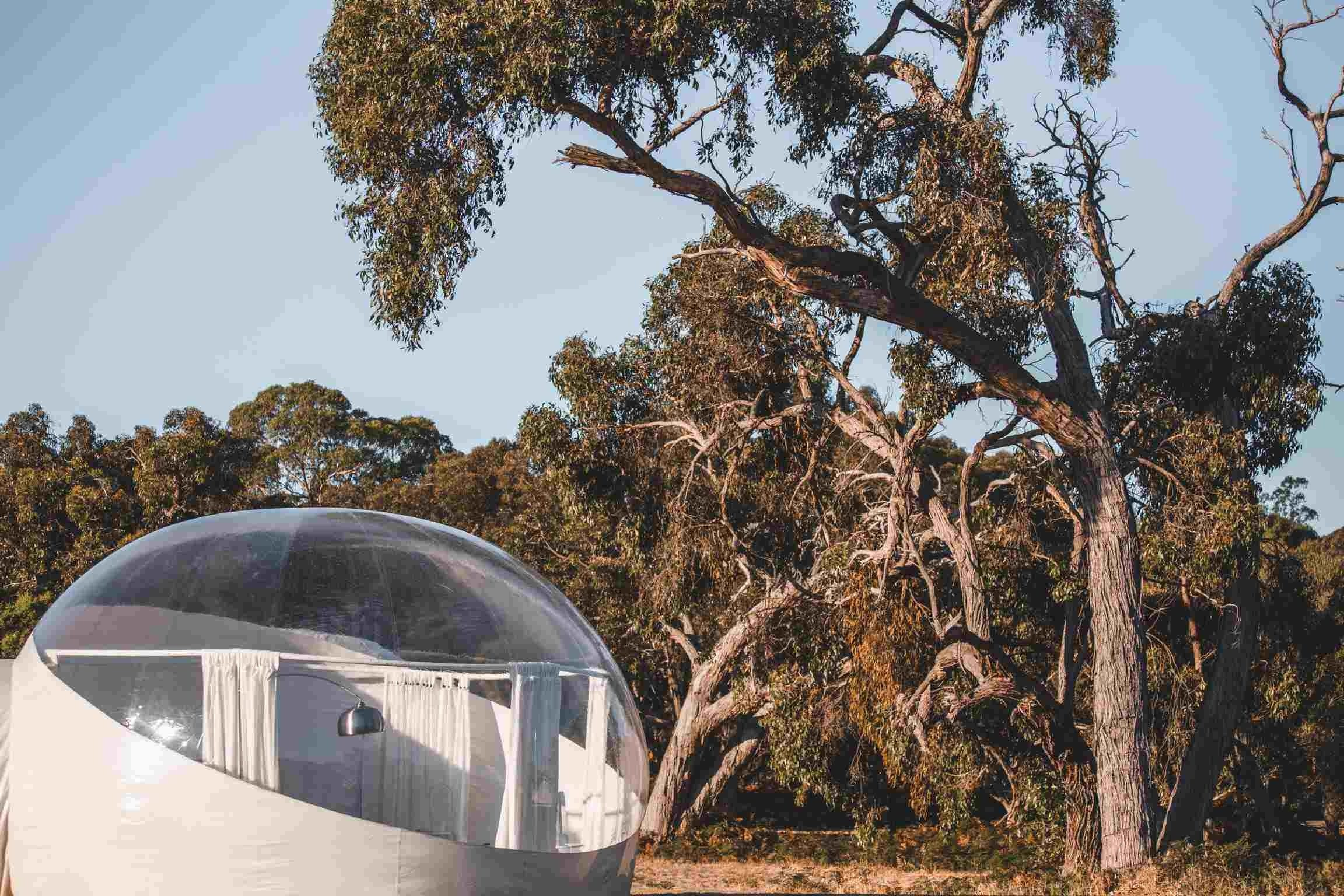 Coonawarra Bubble Tents - Grafton Accommodation