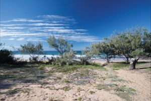 Deepwater National Park camping - Grafton Accommodation