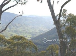 Craigmhor Mountain Retreat - Grafton Accommodation