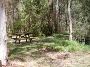 Mulloon Creek campground - Grafton Accommodation