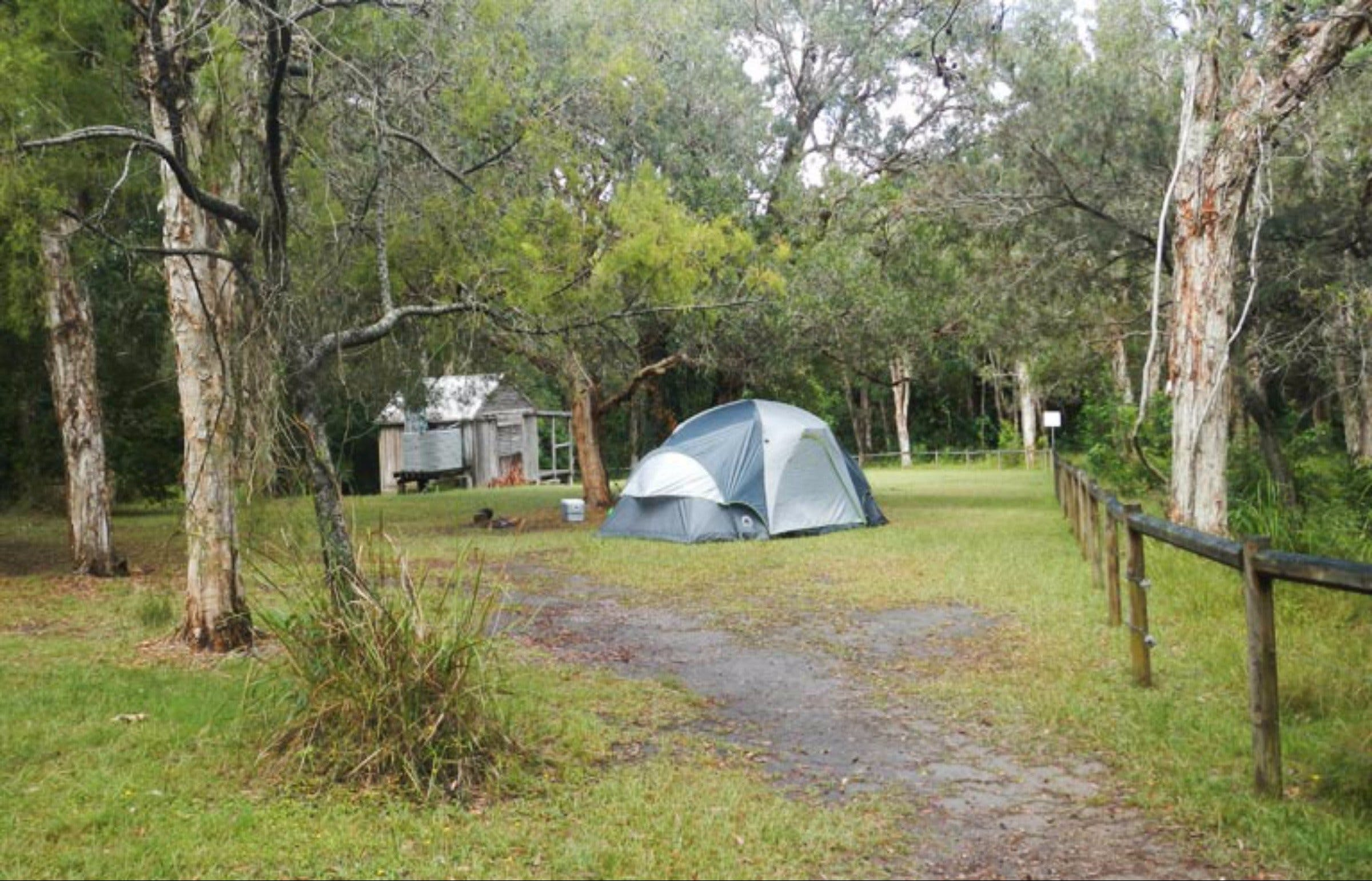Kylies Hut walk-in campground - Grafton Accommodation