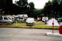 Windsor Gardens Caravan Park - Grafton Accommodation